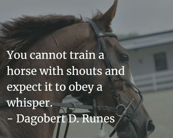 The Secret of Whispering to Your Horse